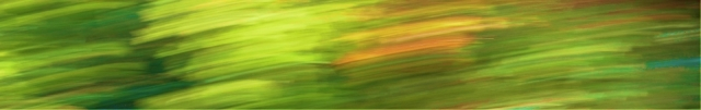 Green leaf blur (Goldstream)